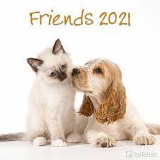 CALENDARIO 2021 FRIENDS 30X30