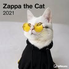 CALENDARIO 2021 ZAPPA THE CAT 30X30