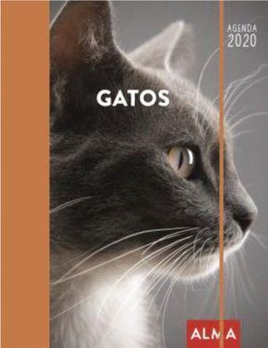 2020 AGENDA GATOS