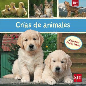 LC.CRIAS DE ANIMALES